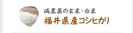 減農薬の玄米・白米 福井県産コシヒカリ